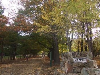 Maruyama_koen